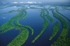 Amazonía: el pulmón codiciado o el control del Cono Sur